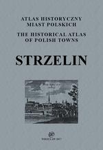 Strzelin. Atlas historyczny miast polskich, t. IV: Śląsk, z. 10 - okładka
